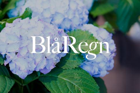 blaregn-logo